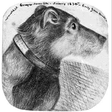 Grasper depicted by Emily Brontë